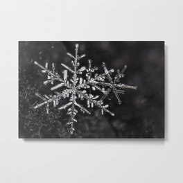 Two Snowflakes Metal Print