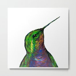 Brilliant Hummingbird Metal Print