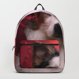 Australian Shepherd and Autumn Backpack