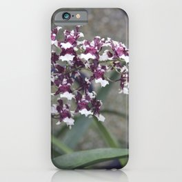 Longwood Gardens Autumn Series 247 iPhone Case