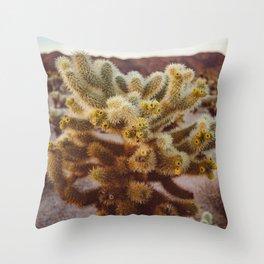 Cholla Cactus Garden XIV Throw Pillow