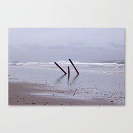 Beach Beauty (2) Canvas Print