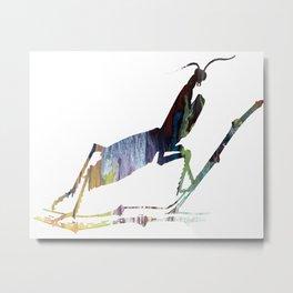 Mantis Metal Print