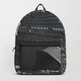 dark sky evolution Backpack