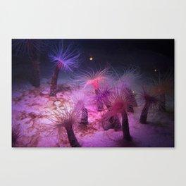 Rosy Anemones Canvas Print