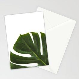 Minimal capture of monstera leaf Stationery Cards