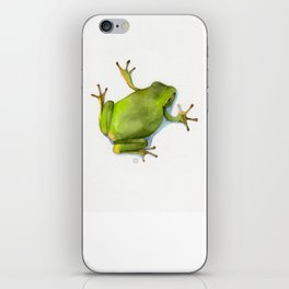 Little Green Tree Frog iPhone Skin