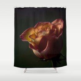 Rose in dark Shower Curtain