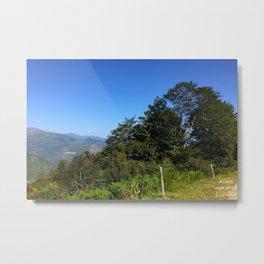 Pyrenean trees Metal Print
