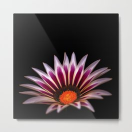 Big Kiss White Flame Flower Metal Print