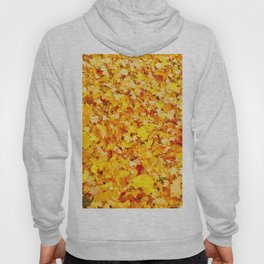 Lovely Day Photography Hoody