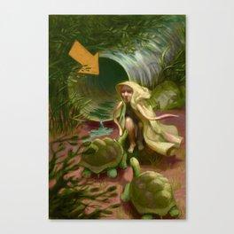 Giant Tortoises Canvas Print