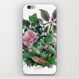Garden Wren iPhone Skin