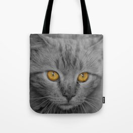 Gray Kitten with Yellow Eyes Tote Bag