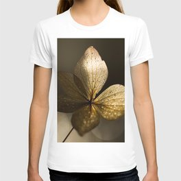 Autumn Scene - Dry Petals with Golden Sunset Light #decor #society6 #buyart T-shirt