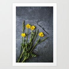 Hello Buttercup - Yellow Flower  Art Print
