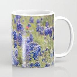 Texas Bluebonnets 10 Coffee Mug