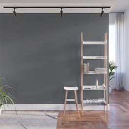 Dark Lead Gray Solid Color Pairs W/ Behr Paint's 2020 Forecast Trending Color Graphic Charcoal Wall Mural