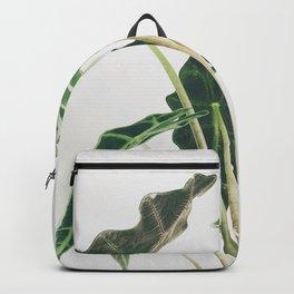 Elephant Ear Backpack