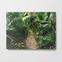 Jungle Pathway Metal Print