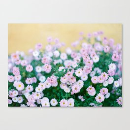 Hungarian Florals Canvas Print