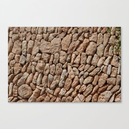 Stone wall background Canvas Print