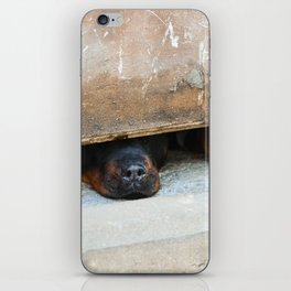 guard dog iPhone Skin