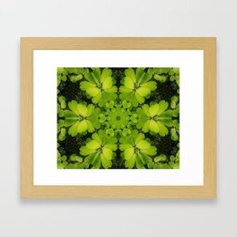 Bright Green Water Plant Framed Art Print