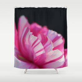 Spring Stripes #3 Shower Curtain