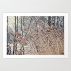 Swaying Grasses Art Print