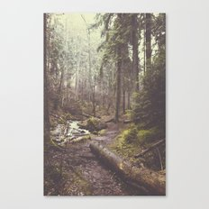 The paths we wander Canvas Print
