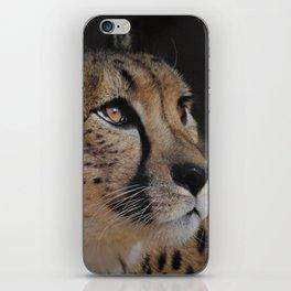 Cheetah Love - Photography iPhone Skin