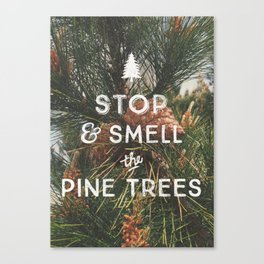 STOP AND SMELL THE PINE TREES Canvas Print