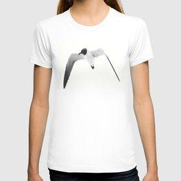 Black Headed Gull By Saribelle Rodriguez T-shirt