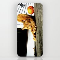 mozart iPhone & iPod Skins featuring Mozart by Eleanor E Soule