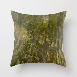 Mossy Tree with Lens Flare Throw Pillow