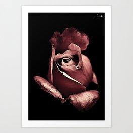 Rose bouton qui s'ouvre colors fashion Jacob's Paris Art Print