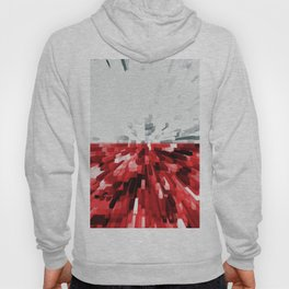 Extruded flag of Poland Hoody
