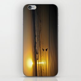 Sunset over the Pacific iPhone Skin
