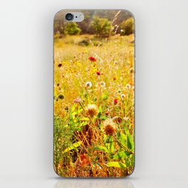 (Texas) Field of Dreams iPhone Skin