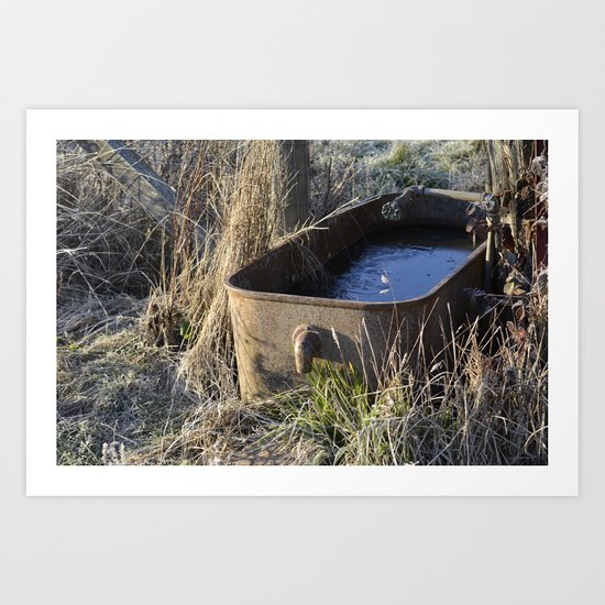 Water Trough  Art Print