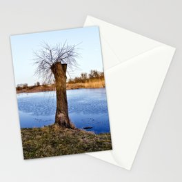 MAGIC NATURE RESERVE Stationery Cards