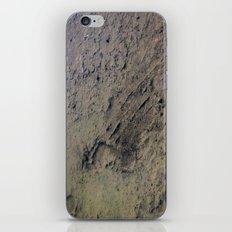 Ephemeral iPhone & iPod Skin