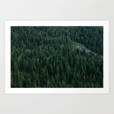 All the trees Art Print
