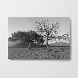 Namibia's desert Metal Print