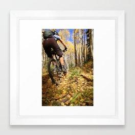 Color Sunday Framed Art Print