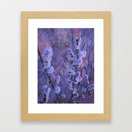 Pear Blossoms Lilac Framed Art Print
