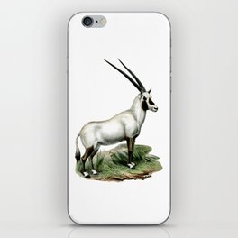 Arabian Oryx iPhone Skin