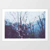 In the spring. Art Print
