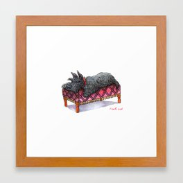 Scottie on a couch Framed Art Print